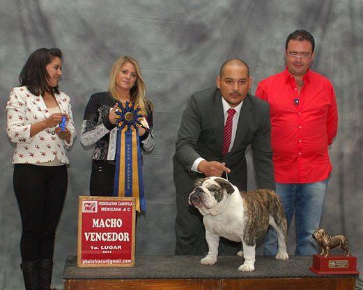 Campeón Americano Chef´s Ole Bad Boy, gana punto para campeón en su  primera presentación en México
