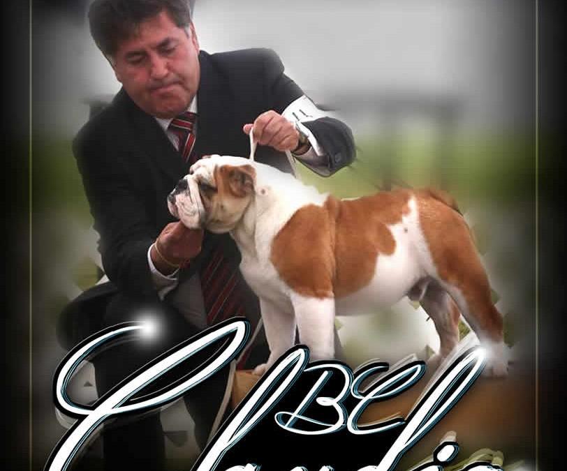 BL Claudio by Ole, #1 en México