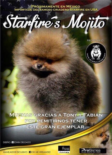 Próximamente en México «Starfire's Mojito»